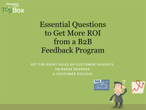 Essential Questions to Get More ROI from B2B Feedback