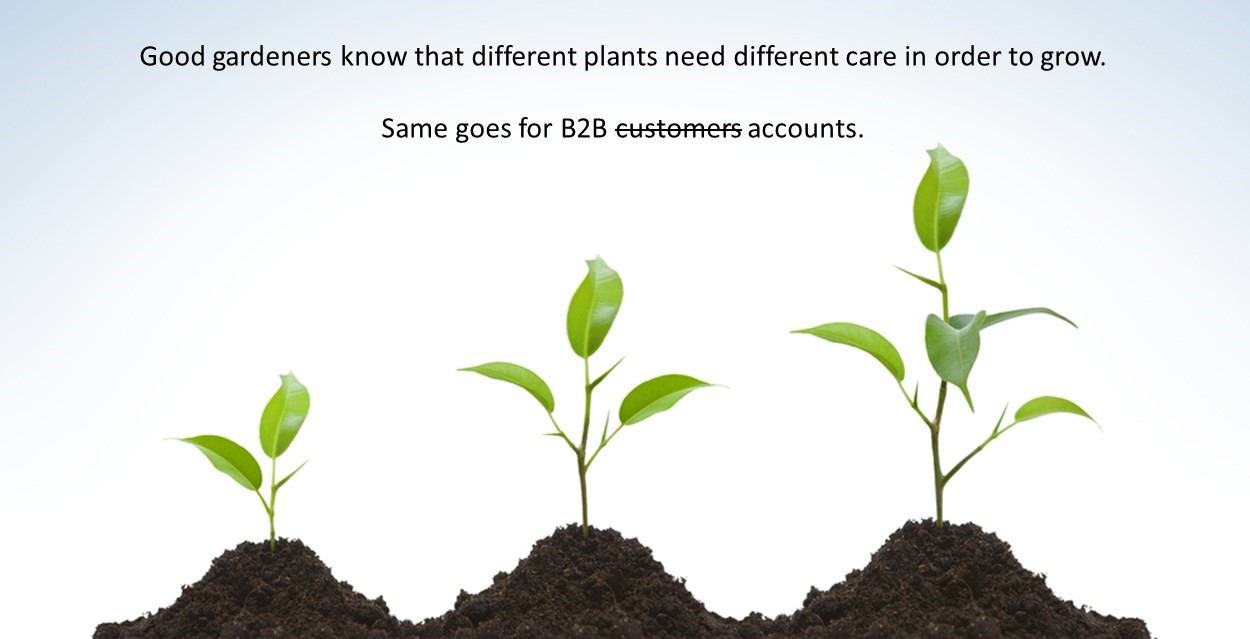 5 Ways B2B Companies Can Accelerate Growth